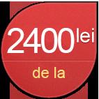 2400-lei1